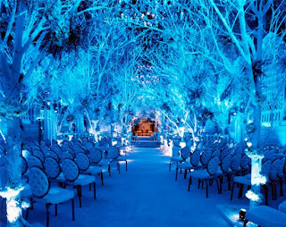 Blue Winter Wedding Decorations