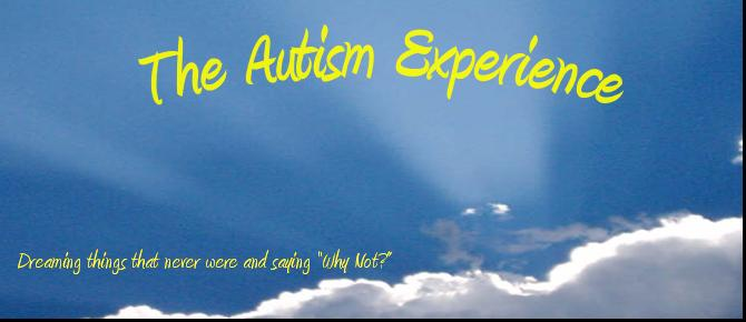 The Autism Experience