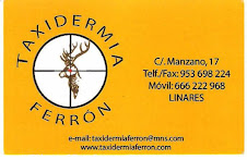 TAXIDERMIA DEL GRUPO