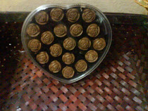 muffinchoco-lovers