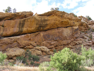 Petroglyphs on yellow stone, DNM