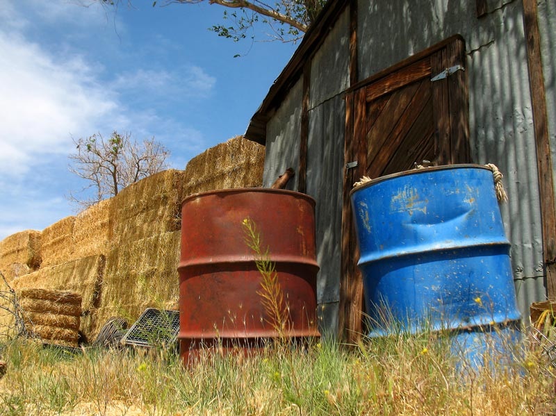 Weeds and barrels; click for previous post