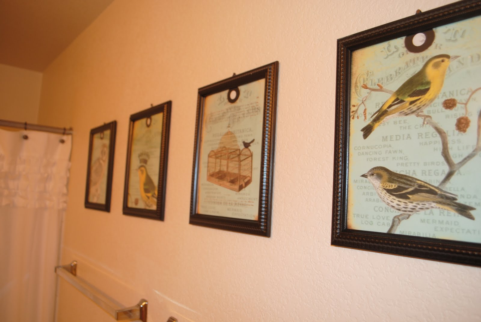 Heres A Dollar Store Craft I Did In The Bathroom LOVE These Vintage Bird Tag Images Found On Etsy For 400 And Bought Frames From Tree