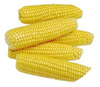 Corn Allergy Sufferer Needs to Avoid