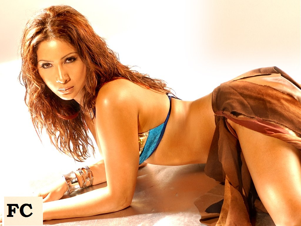 http://4.bp.blogspot.com/_qrmD8jCqKjE/TJCNwAhhufI/AAAAAAAAJ5Q/wOTKiB02i08/s1600/bollywood-actress-wallpapers-super-1.jpg