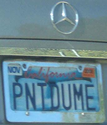 PNT DUME