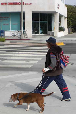 Santa Monica Dogwalkers