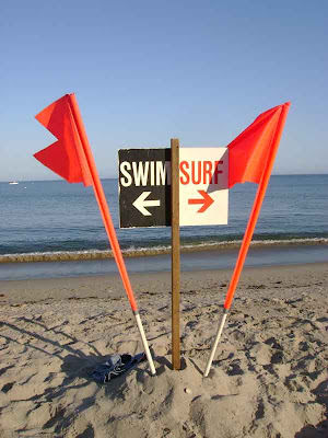 Swim or Surf? - Surfrider Beach - Malibu