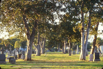 The Grove at Woodlawn Cemetery - Santa Monica