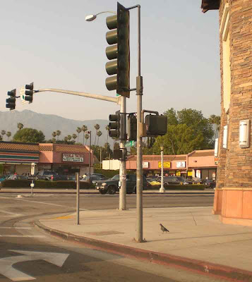 Lake Avenue - Pasadena