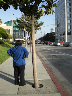 Waiting in Blue - West L.A.
