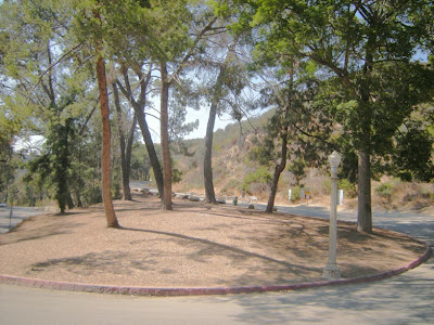 BARTON FINK Feasted with Faulkner at Griffith Park