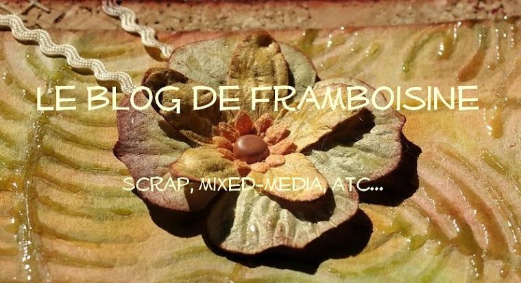 Le Blog de Framboisine