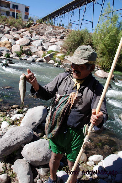 Pescador del Chli