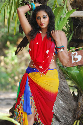 Actress Priyamani hot photos