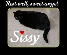 Sweet Sissy, RIP