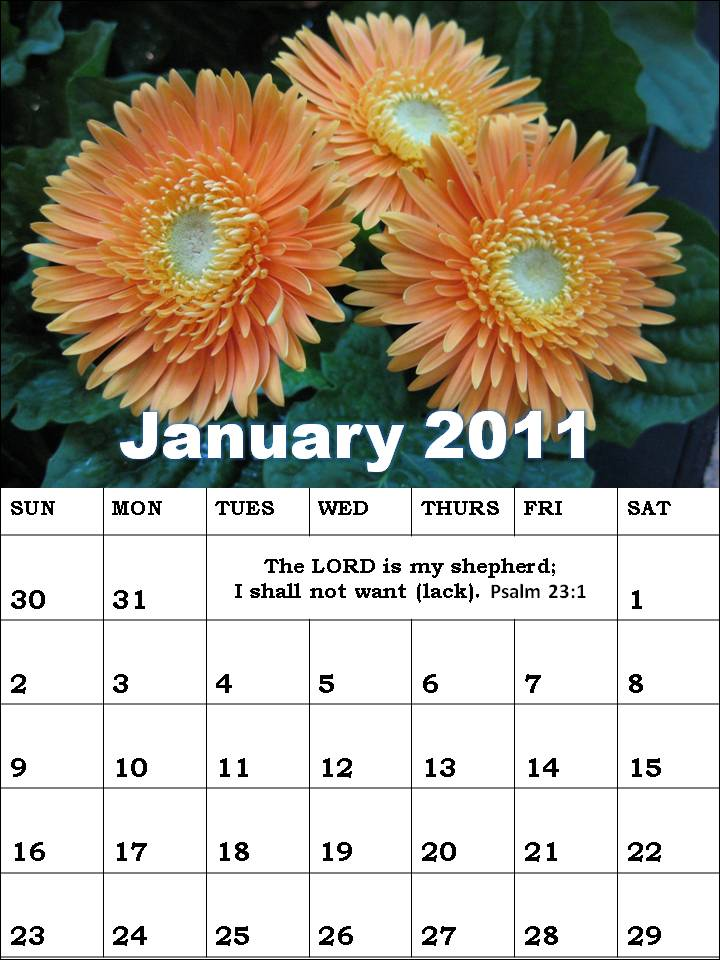 january 2011 calendar wallpaper. january 2011 calendar planner.