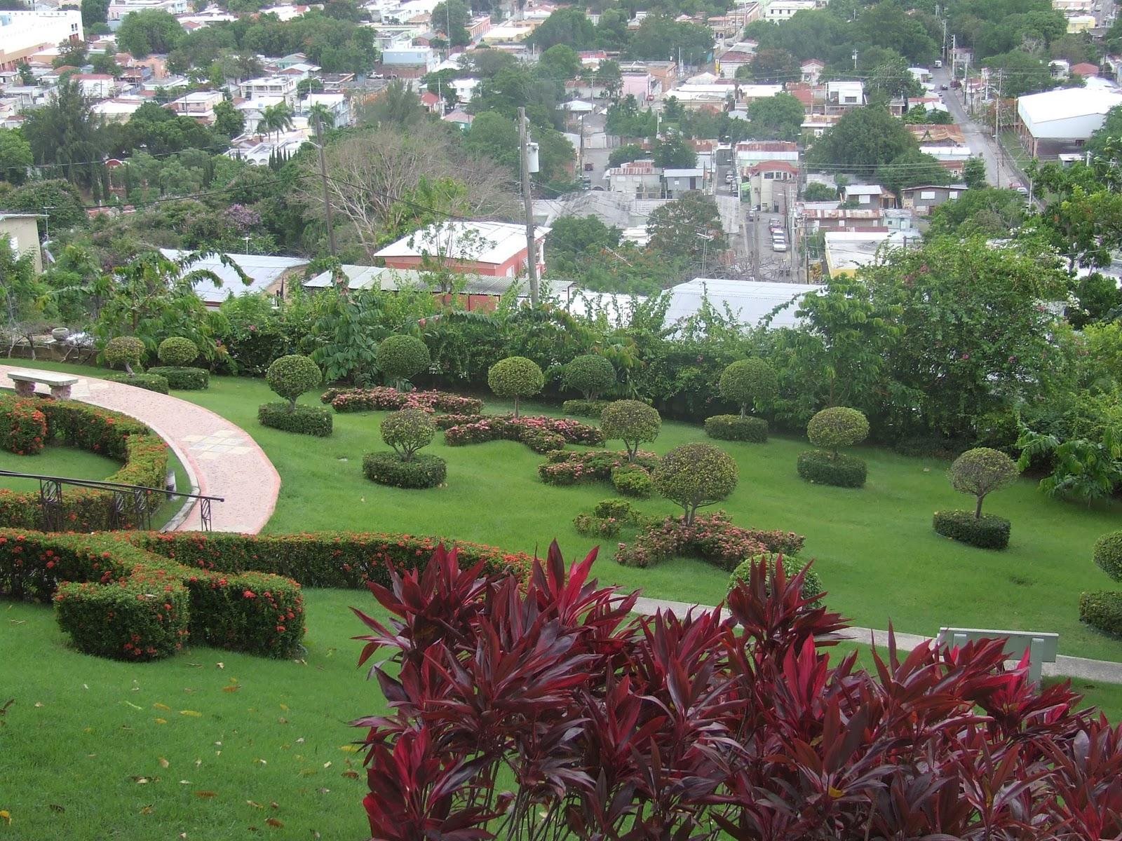 Jardines en puerto rico auto design tech for Jardin xanadu puerto rico