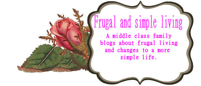 Frugal and simple living