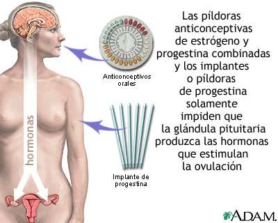 Mammoplastika por el aumento del pecho el foro