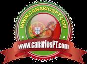 Fórum CanáriosPT