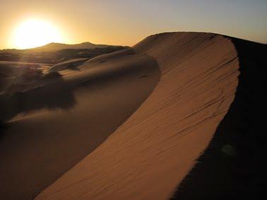 El desert està net