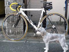 自転車とれおん