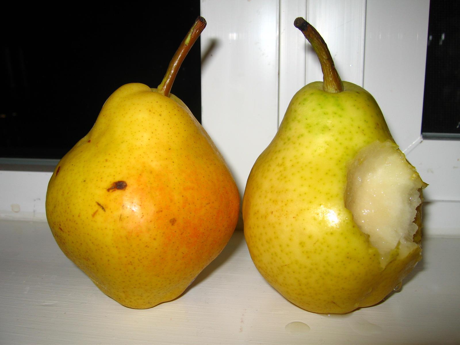[pear+bite]