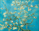 Blossoming Almond..