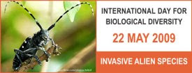 Invasive alien species photo competition