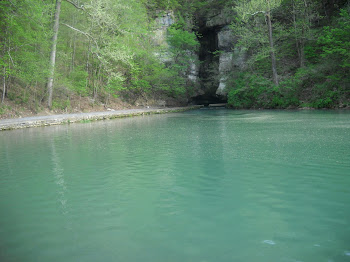 Roaring River Spring, Barry Co., MO