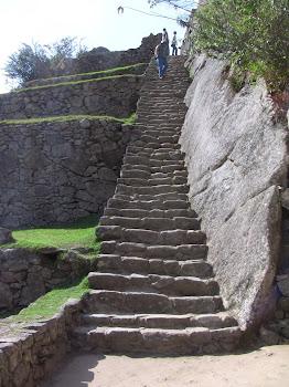 Au Machu Pichu comme partout au Pérou, on monte des escaliers!