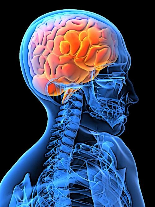 Improvement brain image 1