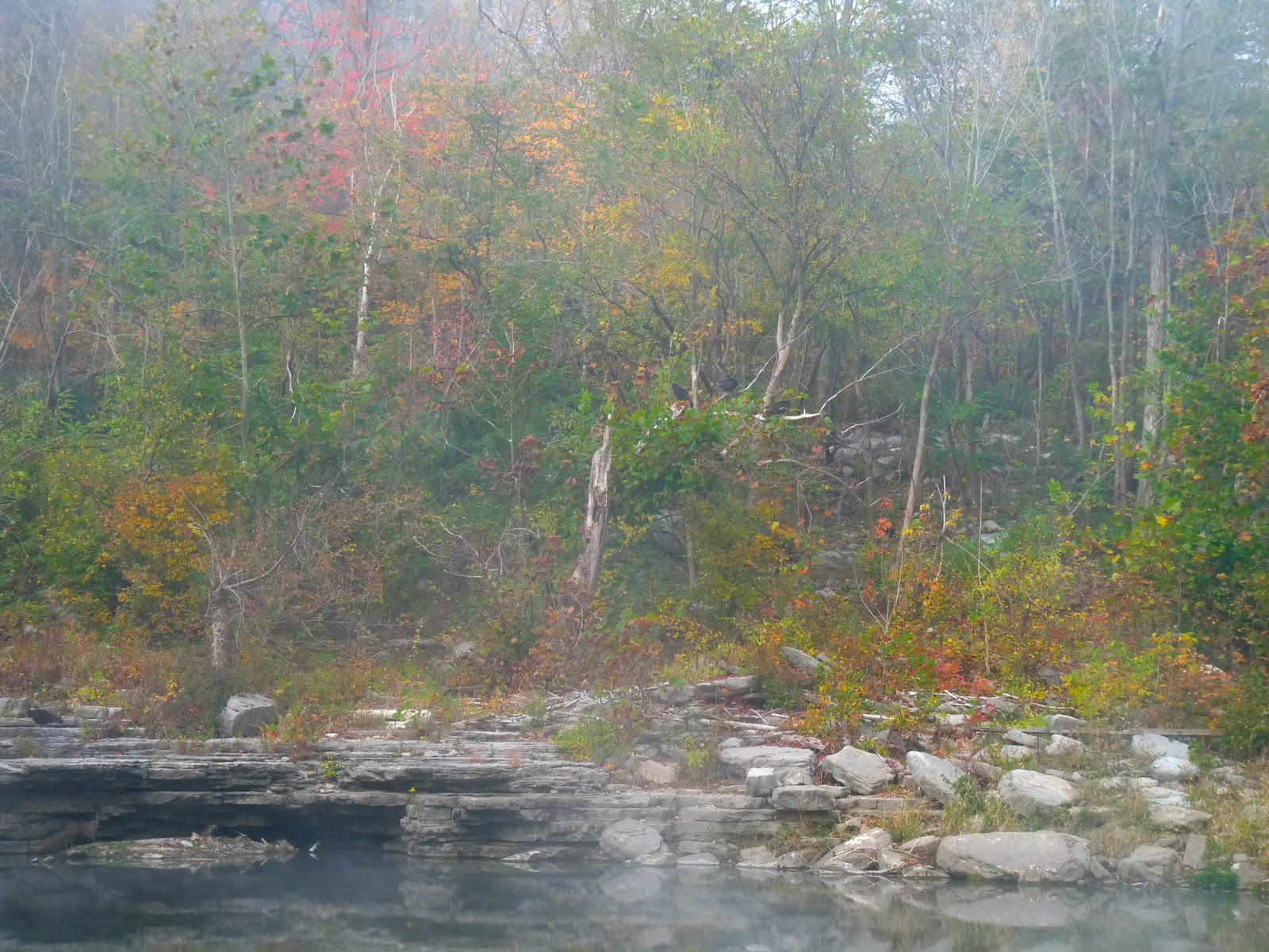 Feeling simply quilty fly fishing and the kentucky backroads for Fly fishing kentucky