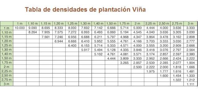densidades plantacion viña