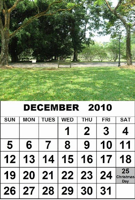 Around Singapore: How to Make Free Calendar 2010 with Singapore ...