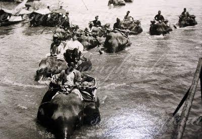 gajah sbagai pengangkutan utama membawa Sultan dan pembesar2