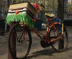 Fiesta Bike
