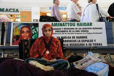 Comunicado de organizaciones saharauis de Defensa de Derechos Humanos de los Territorios Ocupados