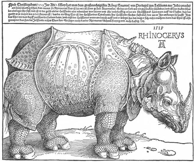 Rhinocervs (1515) ~ Albrecht Dürer