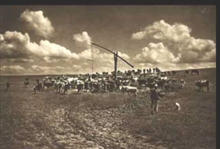 Cresterea animalelor in sec XIX