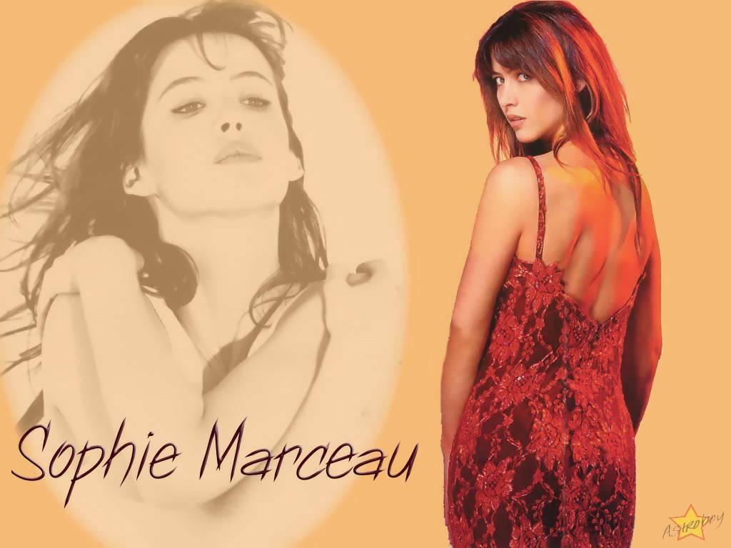 http://4.bp.blogspot.com/_r8GjWqN6cvM/TFDtceMwIZI/AAAAAAAALkY/Qw2kQYLsI18/s1600/sophie_marceau_2.jpg