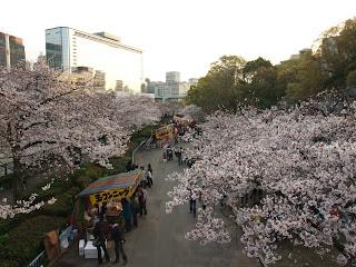 大川の桜並木の中の屋台