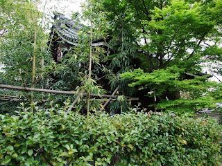 藤田邸跡公園の緑樹