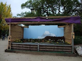 大阪城の菊花展の富士の裾野にも菊