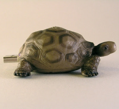 animals tortoise usb flash drive