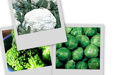 medicina preventiva, vegetais, vegetariana, Brócolis, saúde, Bem Estar,