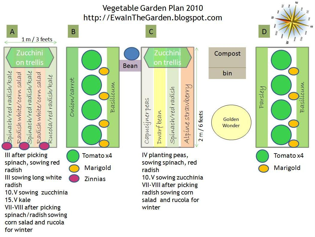 Ewa in the garden vegetable garden plan for Garden layout design