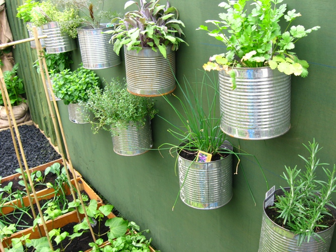ideas for kitchen designs on Herbs growing on the wall in recycled containers.