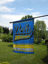 TRUE BLUE BRUINS